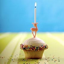 trophy cupcake