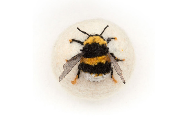 Bumblebee Claire Moynihan