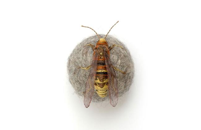 Hornet - Claire Moynihan